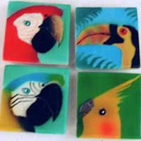 Parrot and Bird Magnet