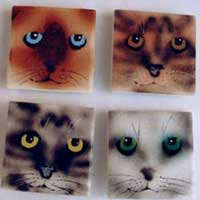 Cat and Kitten Magnets